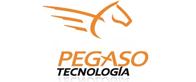Servicio y Soporte en Tecnología Informática SA de CV (PEGASO)
