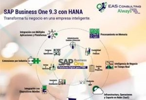 SAP Business One Eas Consulting