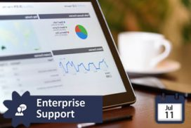 Grupo de Interés Enterprise Support